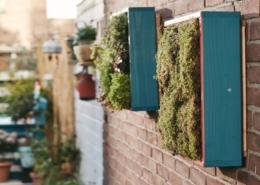 Vertikaler Garten DIY